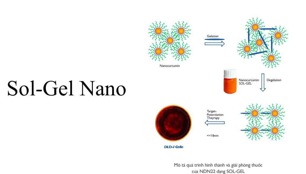 Nano Rutin NDN tác dụng chống oxy hoá như nào? 2