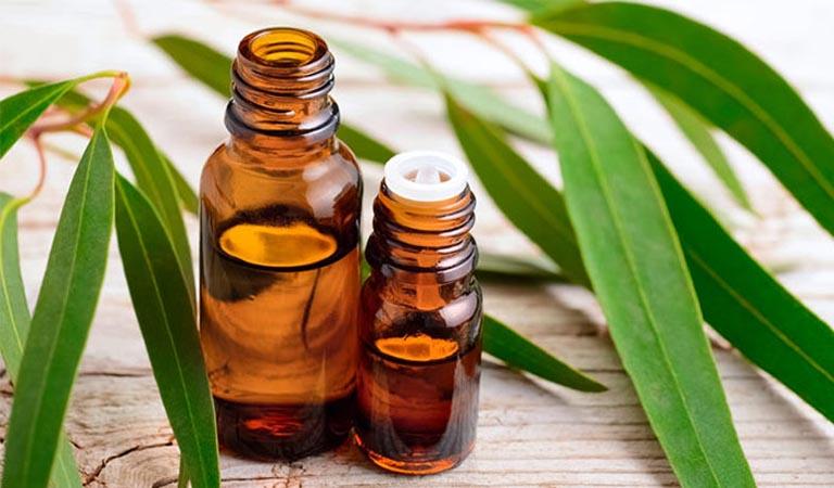 Vỗ về làn da mụn, sẹo thâm với mùi hương thư giãn của Ngọc lan tây và Khuynh diệp 3